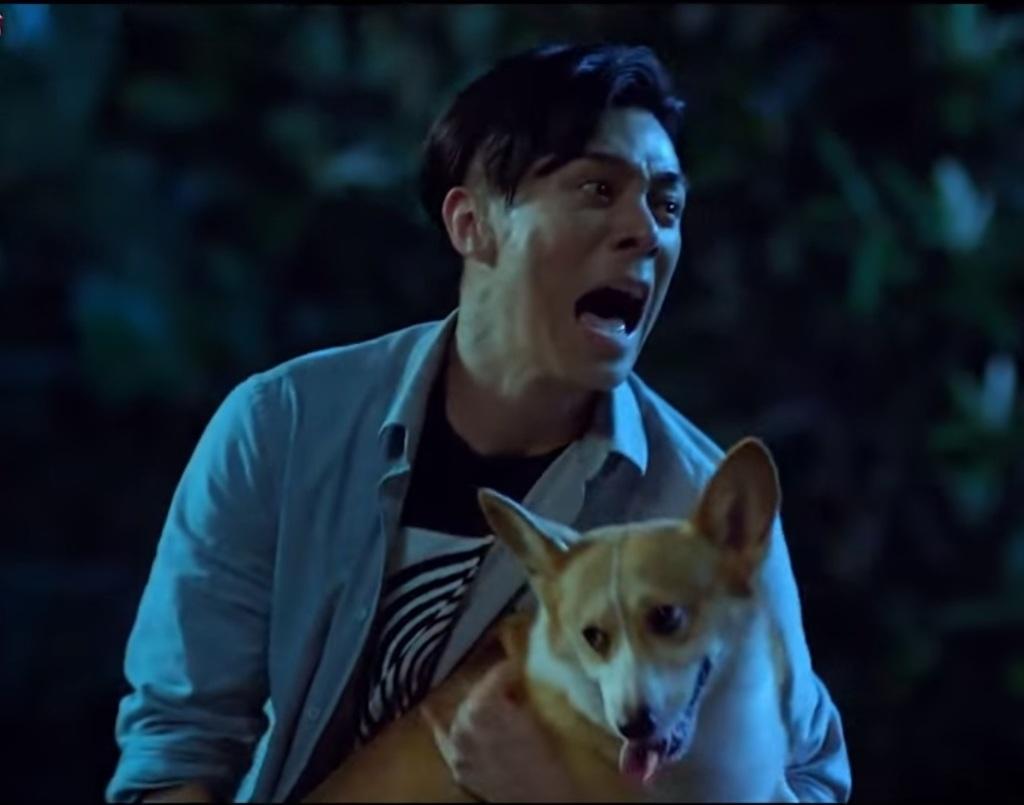 周柏豪怕狗 一開始和萌犬拍戲會緊張得全身僵硬