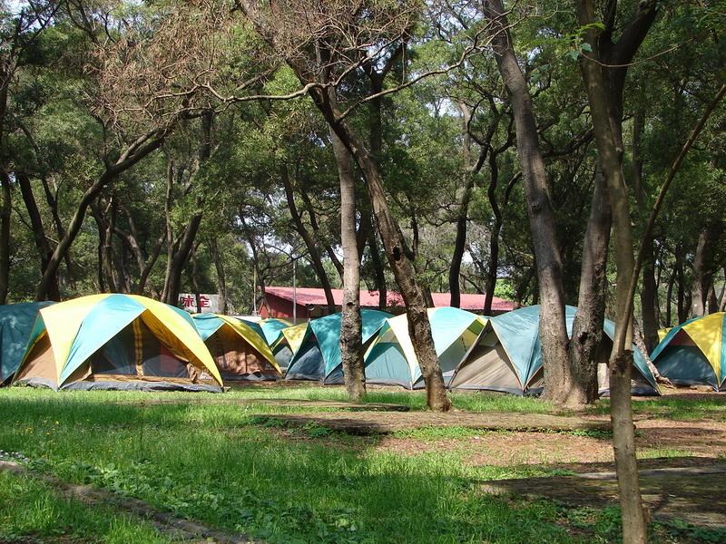 圖四露營區二