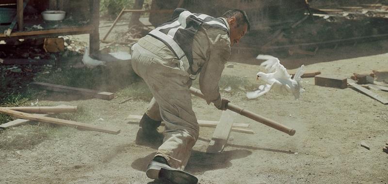 吳宇森導演最美標誌白鴿現身《追捕》