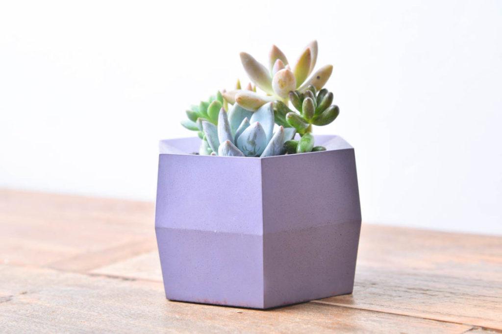 六角盆-噐質1